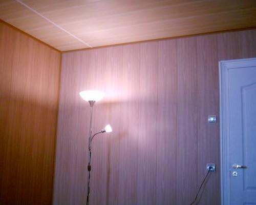 на фото потолок из пластиковых панелей