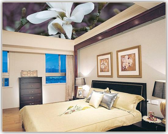Hotte plafond aspirante orleans devis plomberie maison for Peindre un plafond en lambris