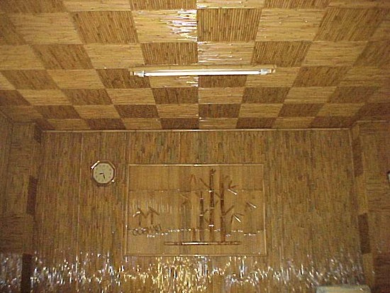 potolok-bambuk-foto-10