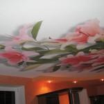 Как производится печать на натяжных потолках